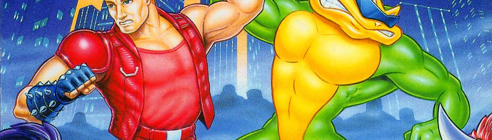 38 Games Like Battletoads Double Dragon For Mac Os X Game Cupid